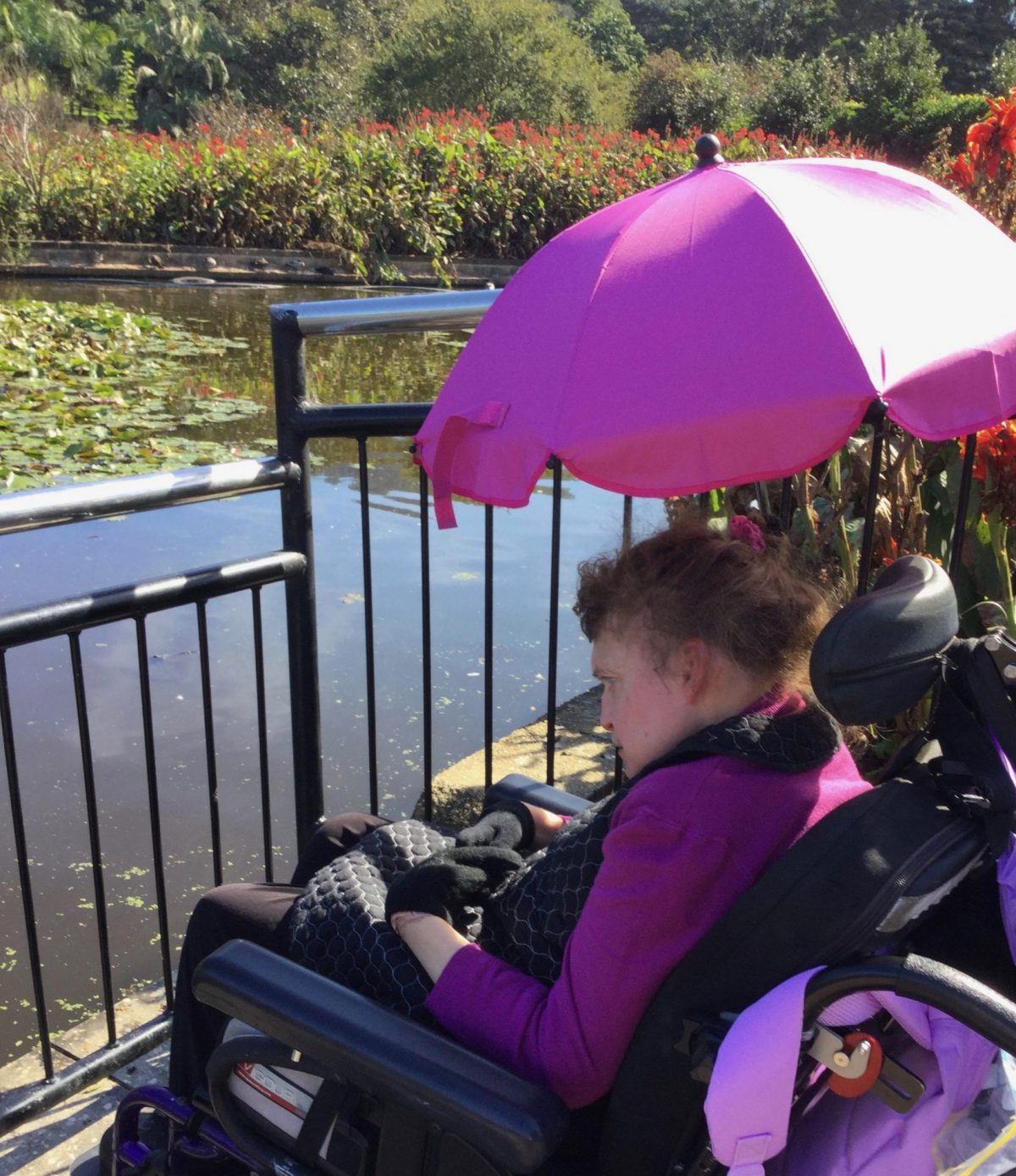 BOTANICAL GARDENS-WOLLONGONG(Supported by Colette)
